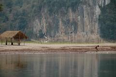 Nam Ou River - Nong Khiaw, Laos
