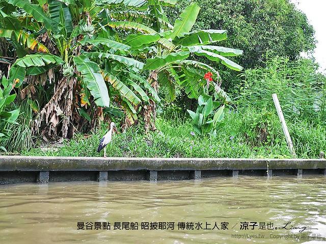 曼谷景點 長尾船 昭披耶河 傳統水上人家 9