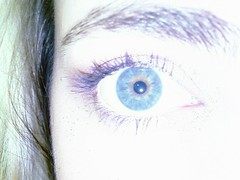 iris, violet, eyelash, eyelash extensions, close-up, eyebrow, blue, eye, organ,