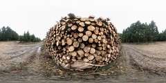 southDowns forestry logs original