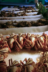 crabs at Phil's Fish Market