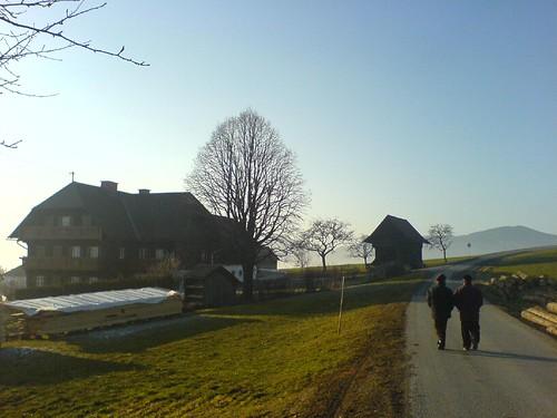 Anhöhe bei Hafenscher/Steiermark