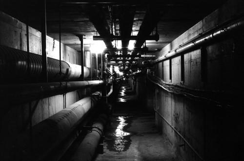 Wash U Steam Tunnel (2000)