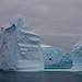 Iceberg: Isle of the Dead by Greenpeace Esperanza