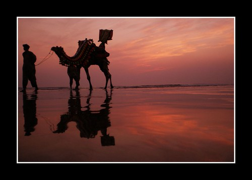 life pakistan sunset sea sun reflection art beach water silhouette wonderful evening flickr shadows view superb great olympus camel tired after capture karachi sindh abigfave internationalflickr superaplus aplusphoto fe180 superbmasterpiece flickrdiamond cliston iqbalkhatri