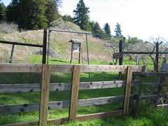 outdoor structure(0.0), home fencing(1.0), picket fence(1.0), split rail fence(1.0), property(1.0), gate(1.0),
