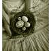 nesting by lorrainemd