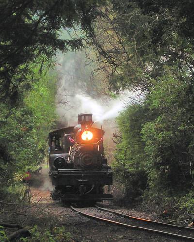 train photo bearmountain locomotive steamlocomotive novideo dixiana roaringcampandbigtreesnarrowgaugerailroad photosonly