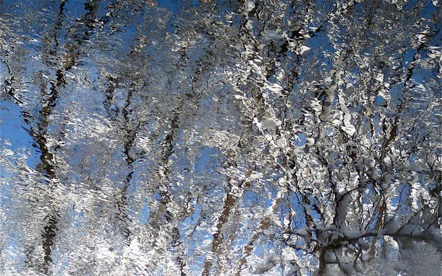 Reflection art! Reflet artistique!