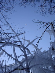 icicling the moon