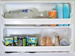 shelf(0.0), shelving(1.0), refrigerator(1.0), major appliance(1.0),