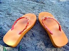 outdoor shoe(0.0), shoe(0.0), limb(0.0), leg(0.0), human body(0.0), spring(0.0), toe(0.0), orange(1.0), footwear(1.0), yellow(1.0), sandal(1.0), flip-flops(1.0), pink(1.0),