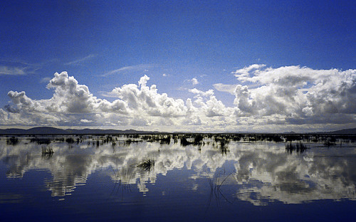 blue summer sky white lake film peru laketiticaca southamerica water clouds reflections geotagged gold kodak horizon olympus puno kodakgold bfbeforeflickr olympusmjuvallweather explored lagogrande geo:lon=69922485 lagopequeño flickrcollectionongetty geo:lat=15804146 endorheicaltiplanobasin rockpuma cragoflead lagochucuito gettymomentcreativecollection