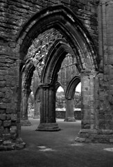 Sweetheart  Abbey Arches