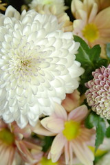 flower arranging, cut flowers, flower, yellow, floral design, plant, marguerite daisy, gerbera, daisy, flora, flower bouquet, chrysanths, daisy, petal,