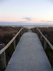 Path the the beach