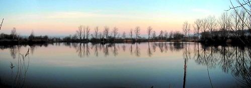 trees panorama reflection sunrise germany deutschland pond teich bäume sonnenaufgang reflektion meinhard eschwege nordhessen werratalsee