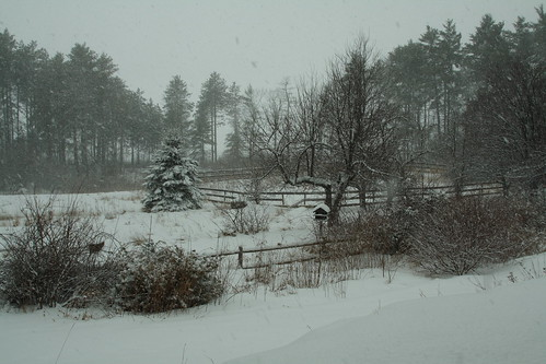 newhampshire snowday noworktoday broompl nhmytown