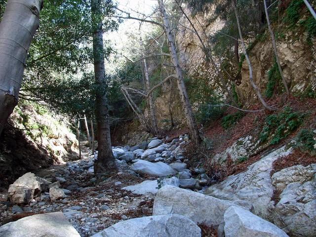 Bear Canyon Trail 015