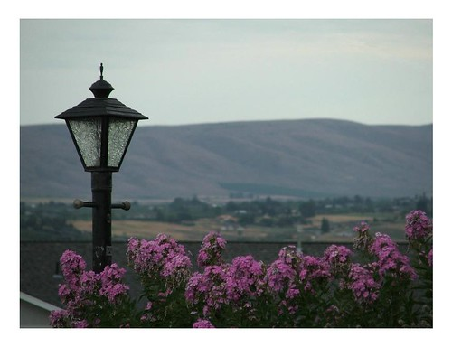 flowers roof lamp yard view post hills valley yakima