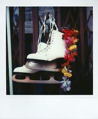 flower skates