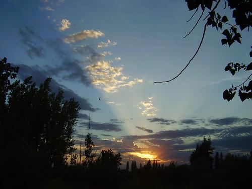 Autor: icaro2006
