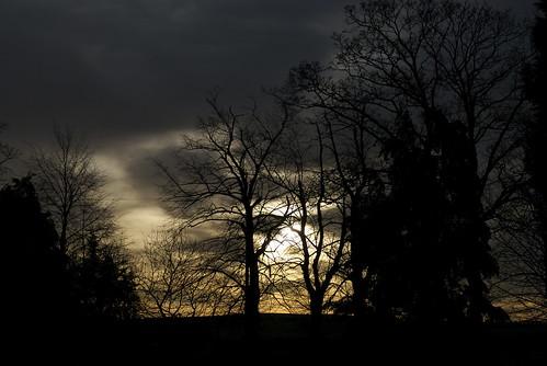 winter sky tree clouds sunrise raw fulbourn d80