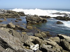 South Africa 2006-259