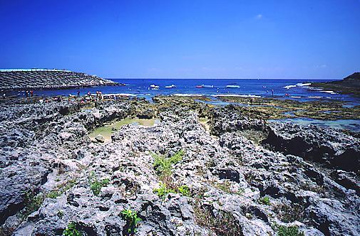 T391墾丁後壁湖遊艇港浮潛區珊瑚礁岩