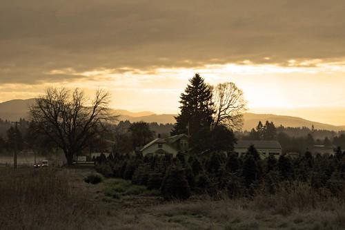 morning trees house mountains sunrise bray devonbray abraysivecom
