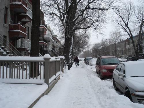 snowed1