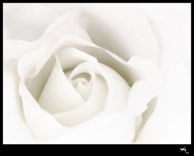 Blanco 2