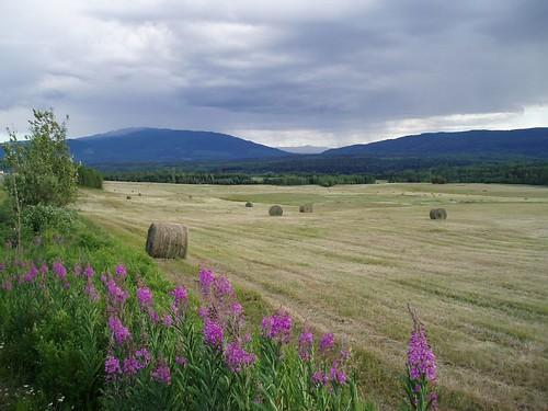 canada 510fav wow landscape britishcolumbia 1on1 unature flickrchallengegroup flickrchallengewinner unaturefav