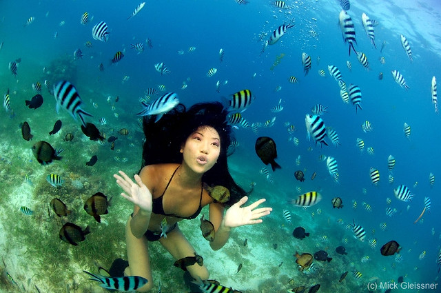 Sabrina Asano underwater