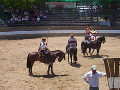 animal sports, rodeo, equestrian sport, sports, charreada,