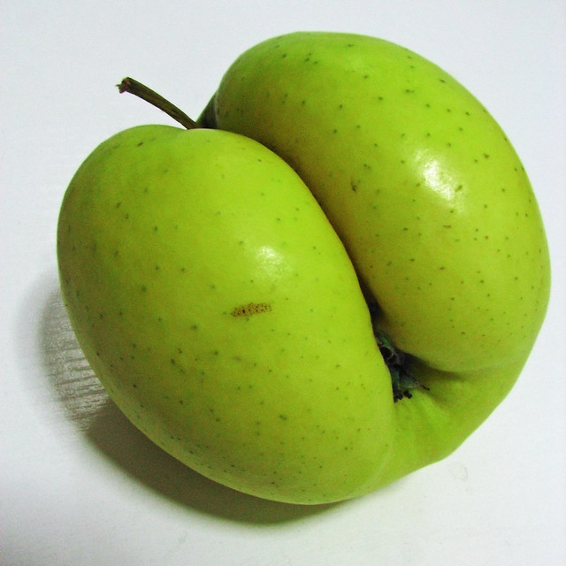 Transgenic Apple