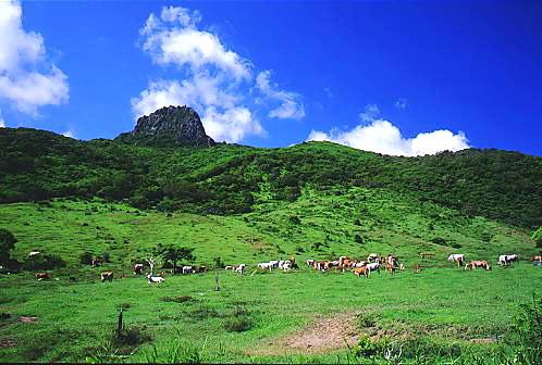 T362墾丁牧場大尖石山