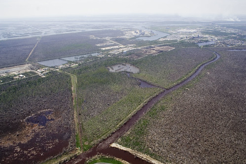 trash wildlife neworleans hurricane debris disposal bayou waste landfill refuge sauvage