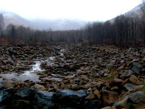 Nebbia sull'Ithilien - Fog on Ithilien - Dino Olivieri