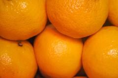 32_86 Orange_2.jpg