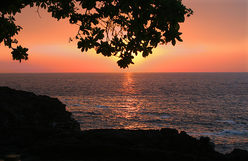 ocean travel sunset red orange seascape reflection tree 20d coffee leaves canon landscape hawaii lava amber photo warm pacific photograph tropical bigisland volcanic kona sillhouette interestingness285 superbmasterpiece explorer285 familygetty