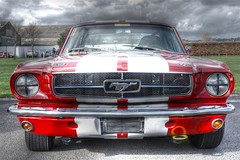 stock car racing(0.0), automobile(1.0), automotive exterior(1.0), vehicle(1.0), shelby mustang(1.0), first generation ford mustang(1.0), bumper(1.0), ford(1.0), classic car(1.0), land vehicle(1.0), muscle car(1.0), sports car(1.0),