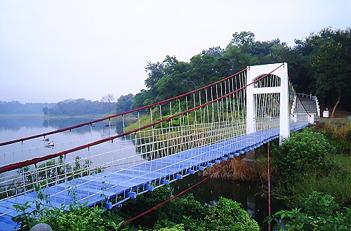 S273澄清湖富國島吊橋