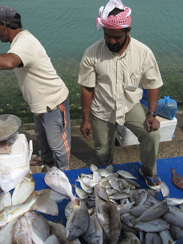 Fishing For Food: What Are The Best Fish To Eat