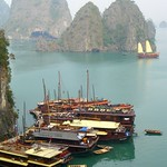 Boats at the Dock - Halong Bay, Vietnam