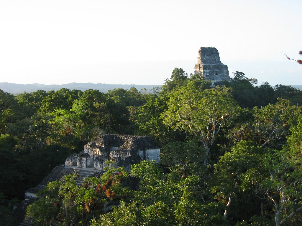 mayan civilization tikal At tikal, the maya placed  a mayan water system with lessons for today by kelly slivka  one of the largest and most successful mayan settlements.