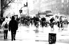 Snowstorm Rushhour - Cycling in Winter in Copenhagen