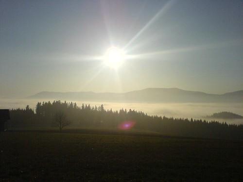 Bodennebel bei Hafenscher/Steiermark
