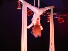 event, performing arts, aerialist, entertainment, dance, performance, acrobatics, performance art,