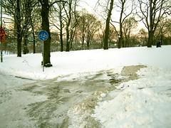In den Schnee beißen